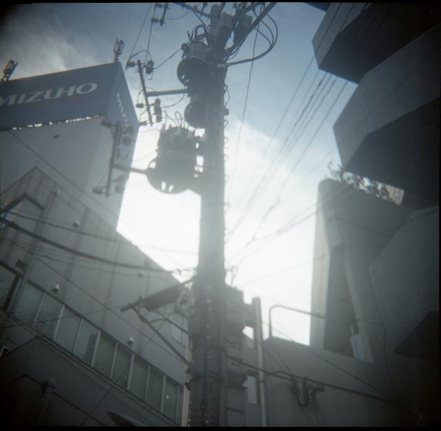 imgphoto1268.jpg
