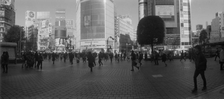 imgphoto1032s