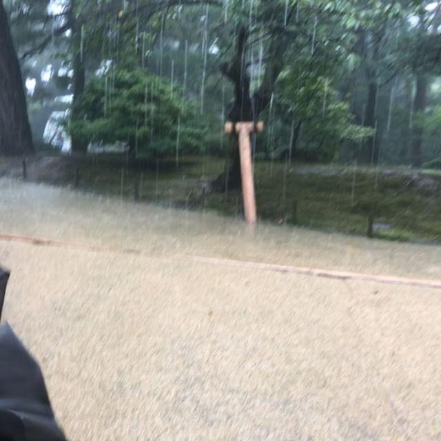 #豪雨 #兼六園