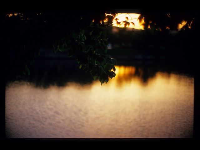 夕暮れ平和公園